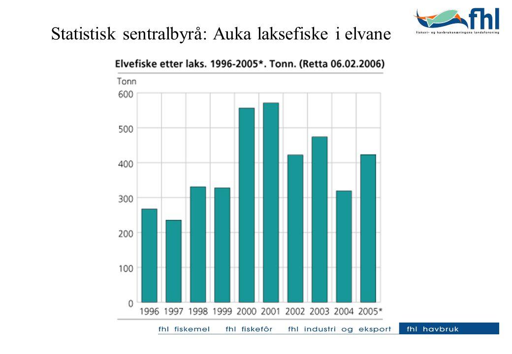 Statistisk sentralbyrå: Auka laksefiske i elvane