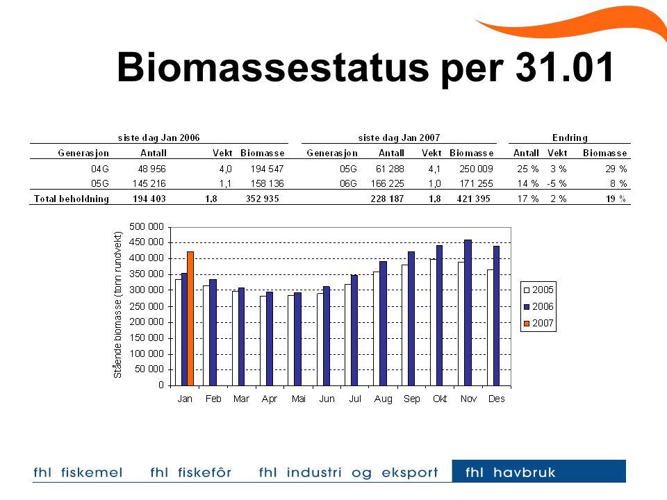 Biomassestatus per 31.01  Tilsvarene tall for Trøndelag: Midt Norge: