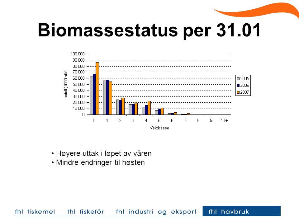 Biomassestatus per 31.01 Høyere uttak i løpet av våren