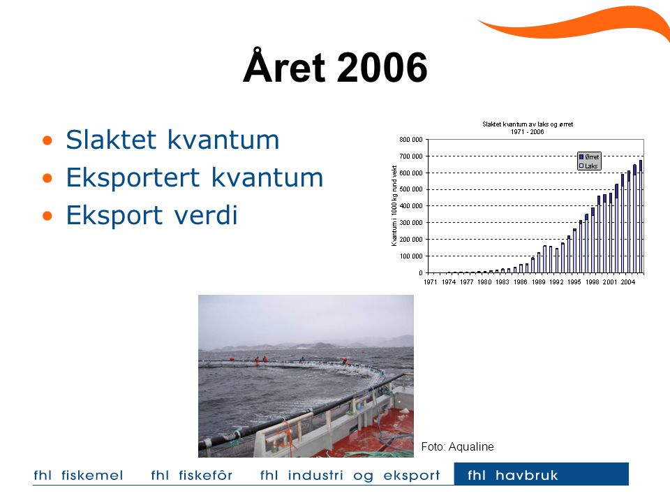 Året 2006 Slaktet kvantum Eksportert kvantum Eksport verdi