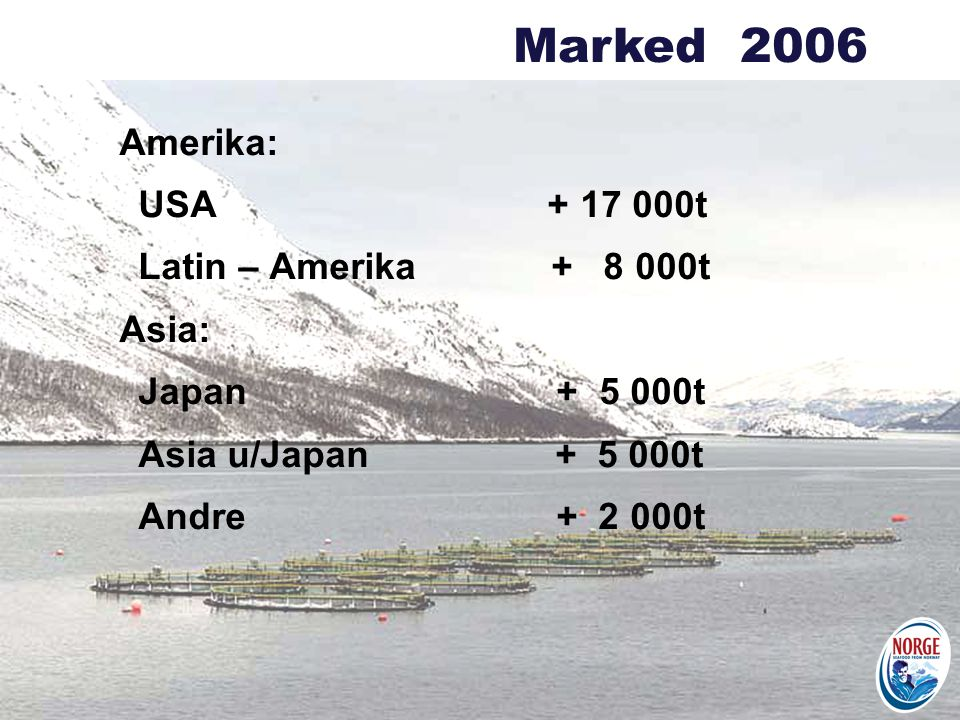 Marked 2006 Amerika: USA + 17 000t Latin – Amerika + 8 000t Asia: