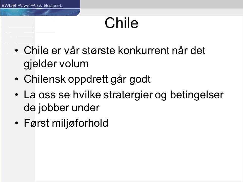 Chile Chile er vår største konkurrent når det gjelder volum