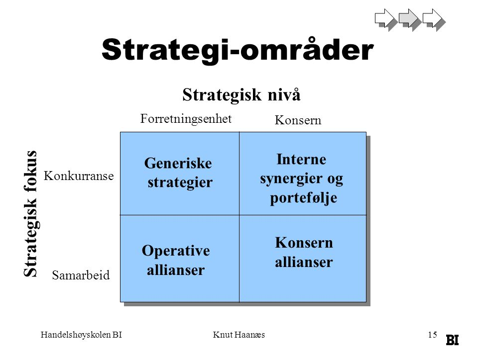 Strategi-områder Strategisk nivå Strategisk fokus Interne Generiske