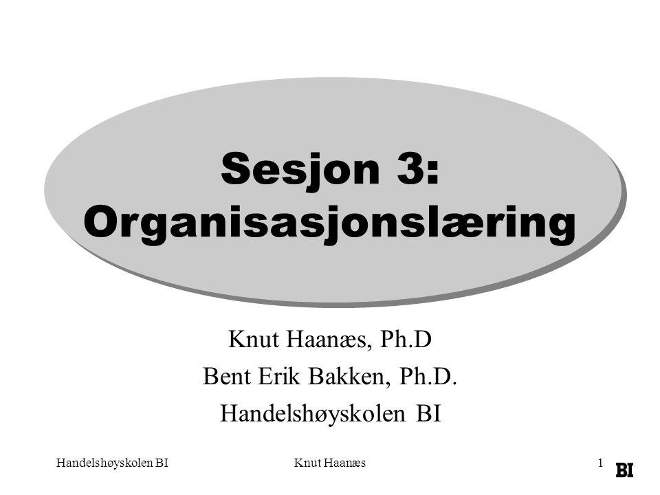 Sesjon 3: Organisasjonslæring