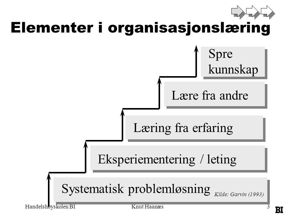 Elementer i organisasjonslæring