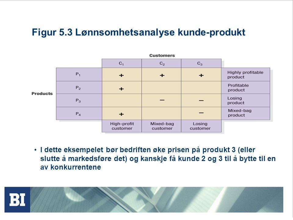 Figur 5.3 Lønnsomhetsanalyse kunde-produkt
