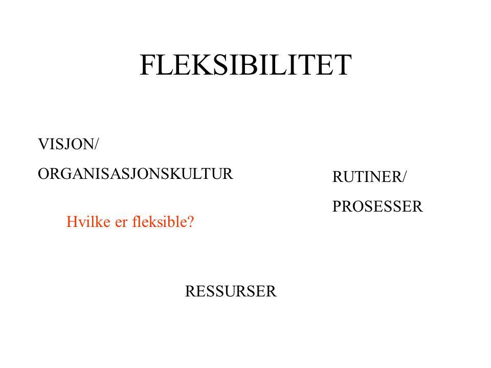 FLEKSIBILITET VISJON/ ORGANISASJONSKULTUR RUTINER/ PROSESSER