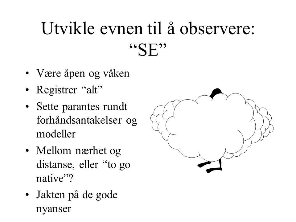 Utvikle evnen til å observere: SE
