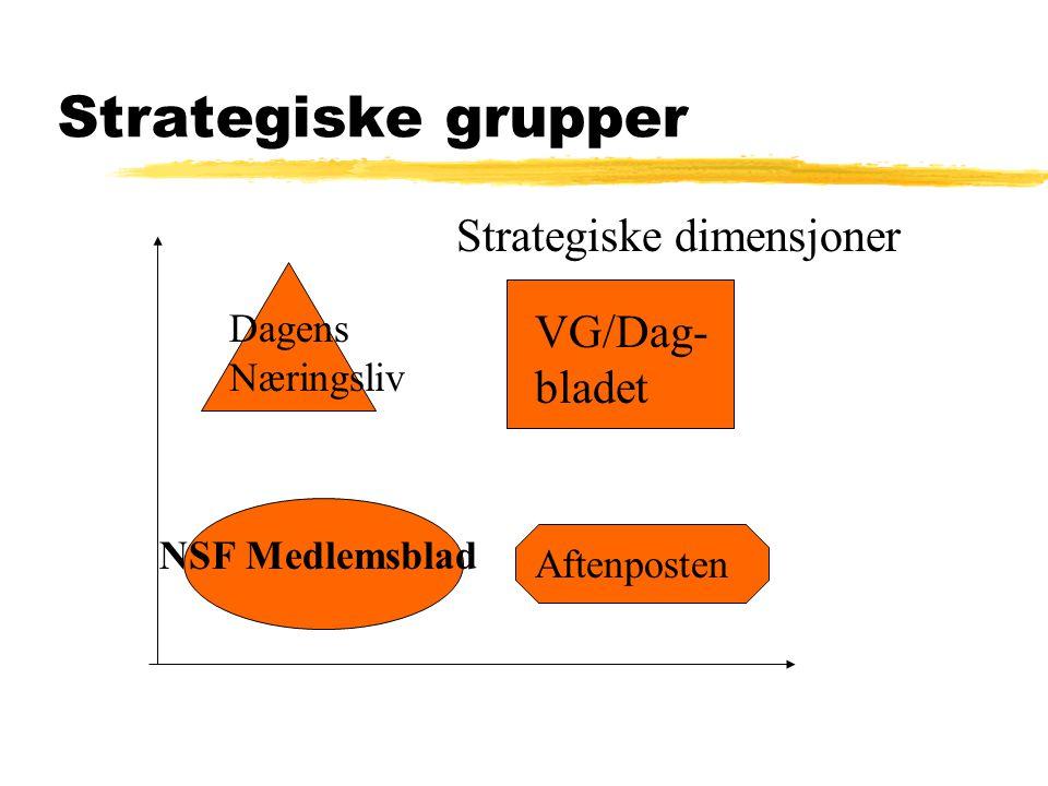 Strategiske grupper Strategiske dimensjoner VG/Dag-bladet