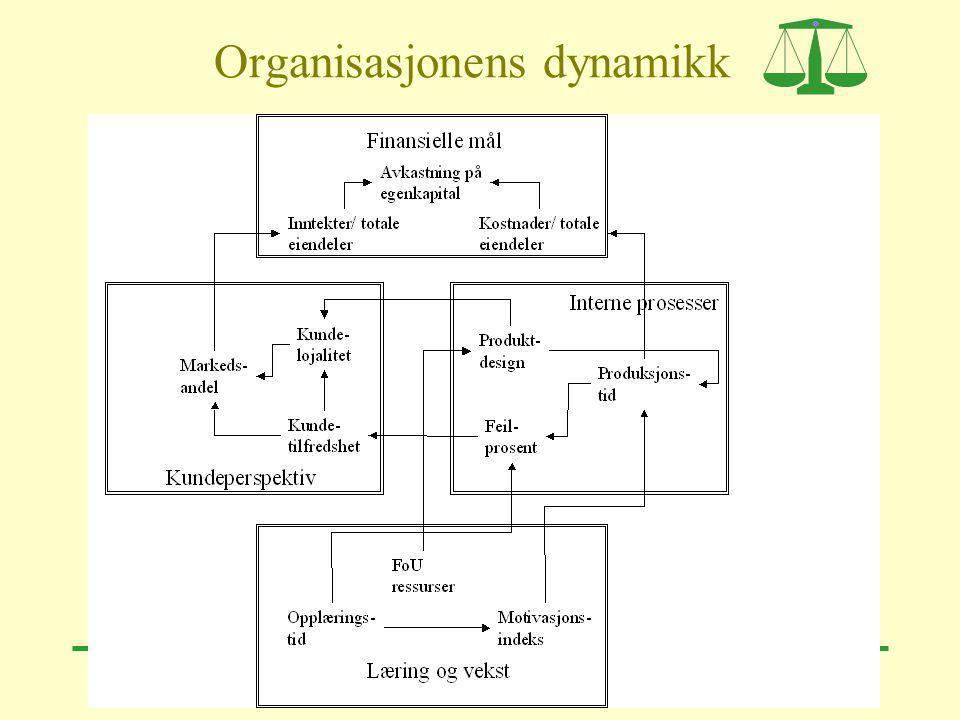 Organisasjonens dynamikk