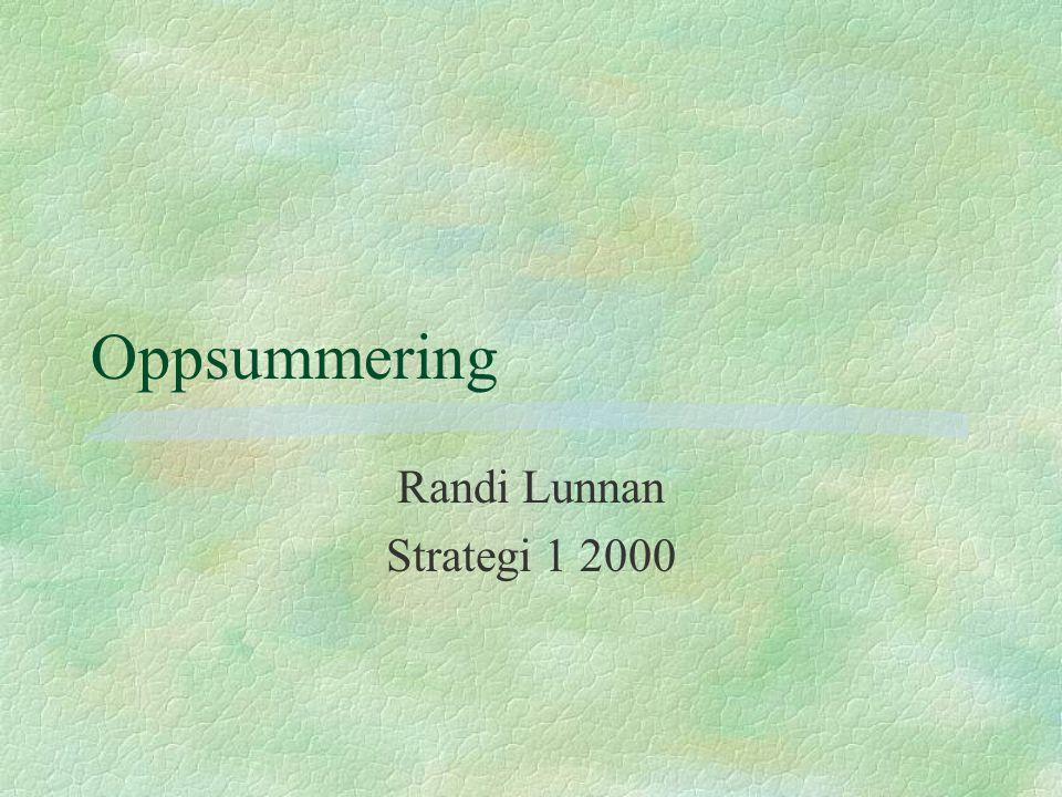 Oppsummering Randi Lunnan Strategi 1 2000