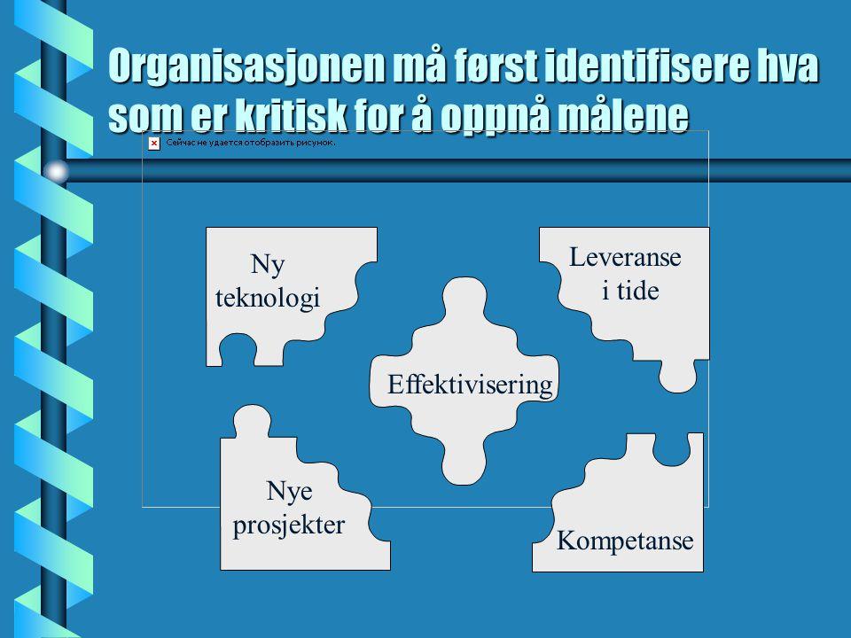 Organisasjonen må først identifisere hva som er kritisk for å oppnå målene