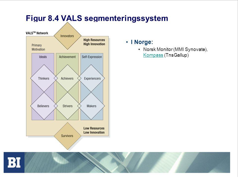 Figur 8.4 VALS segmenteringssystem