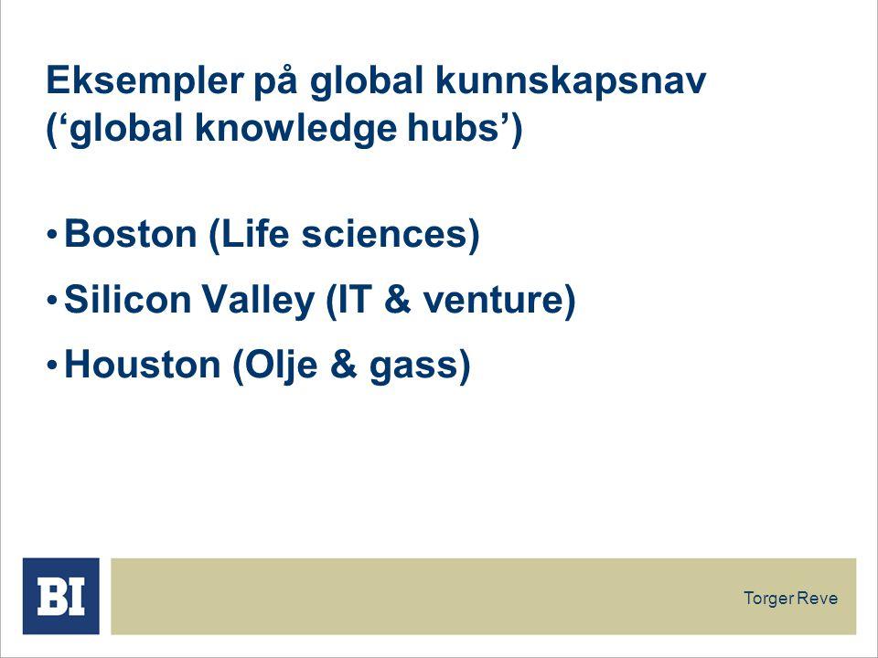 Eksempler på global kunnskapsnav ('global knowledge hubs')