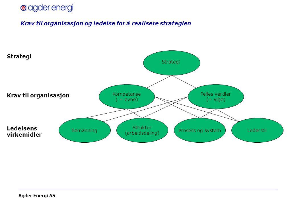 Krav til organisasjon og ledelse for å realisere strategien