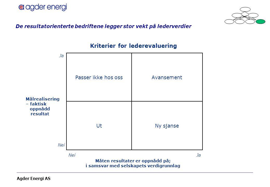 De resultatorienterte bedriftene legger stor vekt på lederverdier
