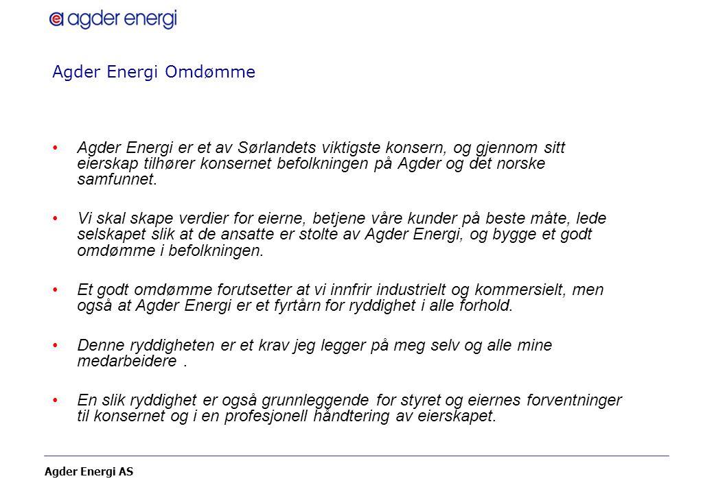 Agder Energi Omdømme