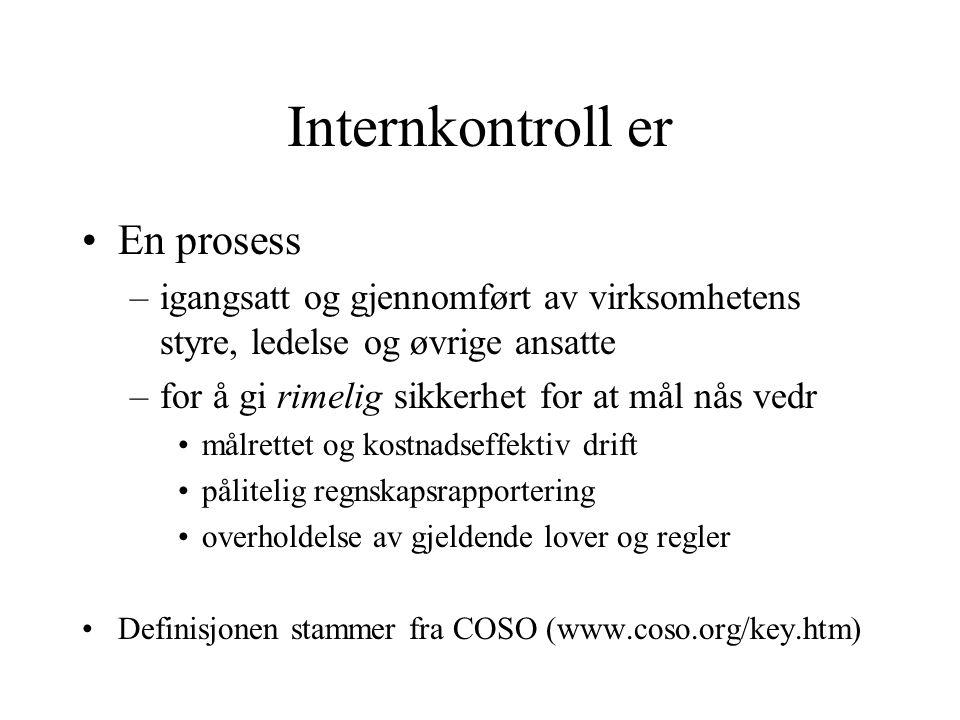 Internkontroll definisjon