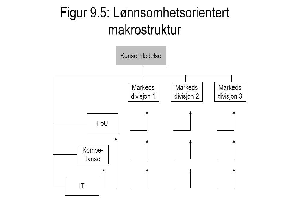Figur 9.5: Lønnsomhetsorientert makrostruktur