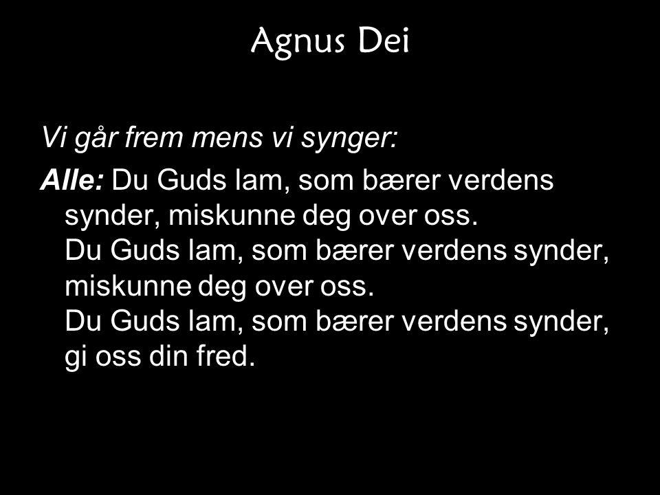 Agnus Dei Vi går frem mens vi synger: