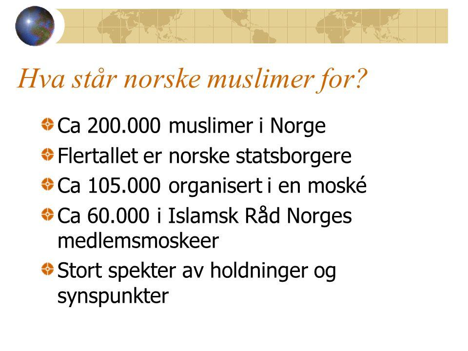 Hva står norske muslimer for