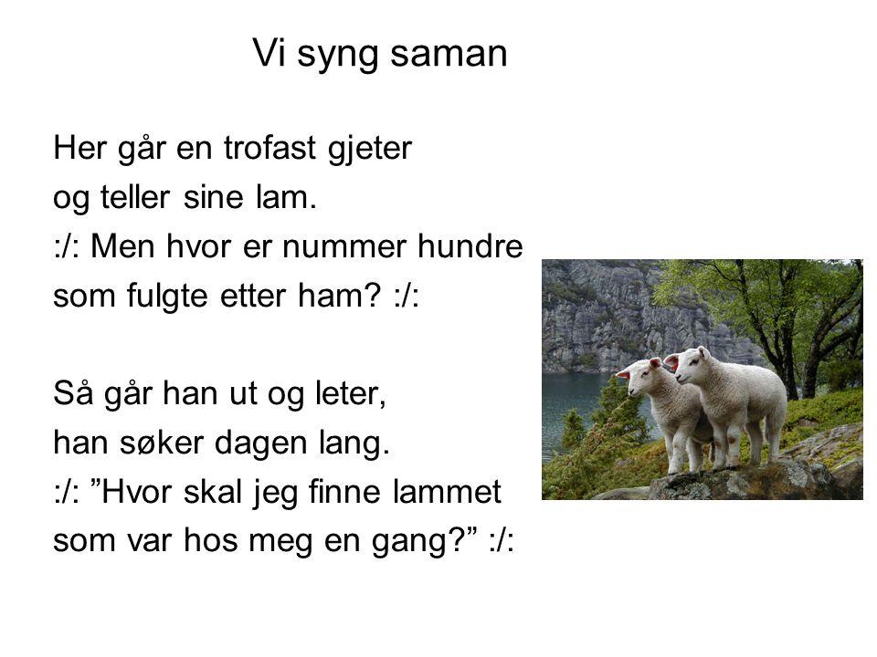 Vi syng saman Her går en trofast gjeter og teller sine lam.