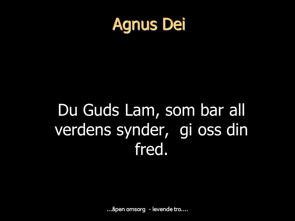 Du Guds Lam, som bar all verdens synder, gi oss din fred.