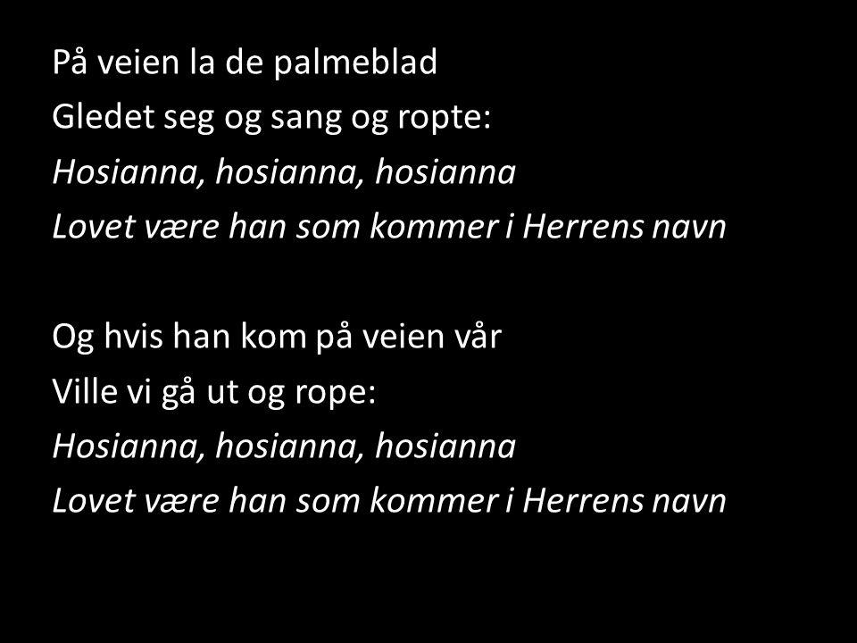 På veien la de palmeblad Gledet seg og sang og ropte: Hosianna, hosianna, hosianna Lovet være han som kommer i Herrens navn Og hvis han kom på veien vår Ville vi gå ut og rope: