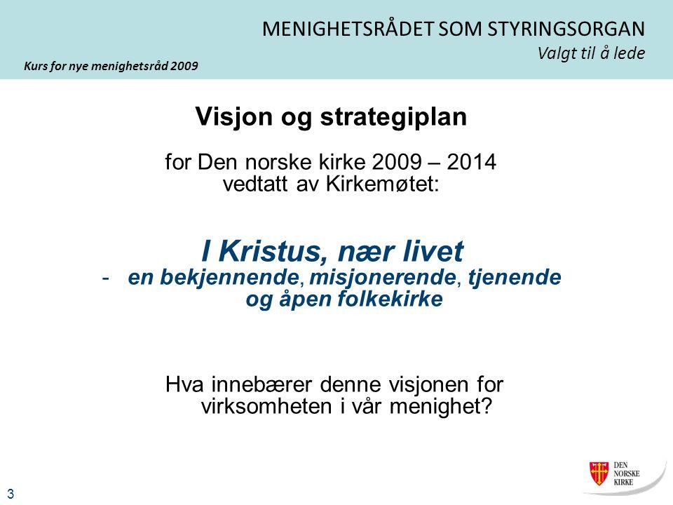 Visjon og strategiplan