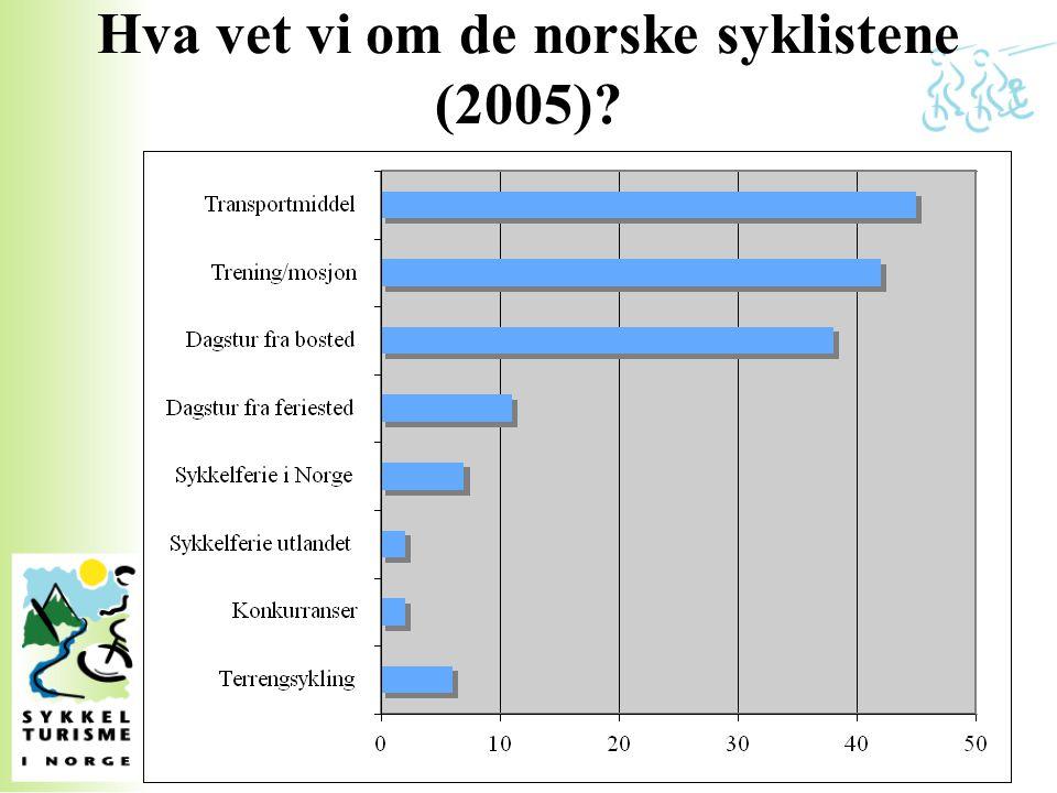 Hva vet vi om de norske syklistene (2005)