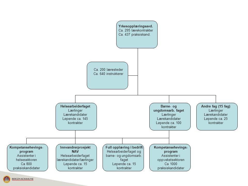 Yrkesopplæringsavd. Ca. 295 lærekontrakter Ca. 437 praksiskand.