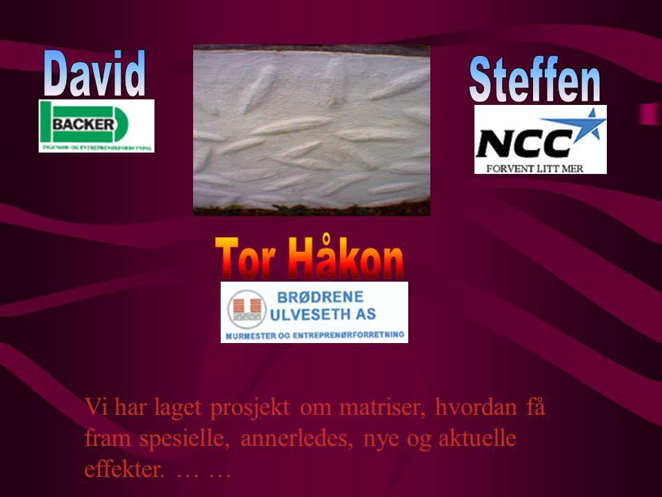David Steffen Tor Håkon