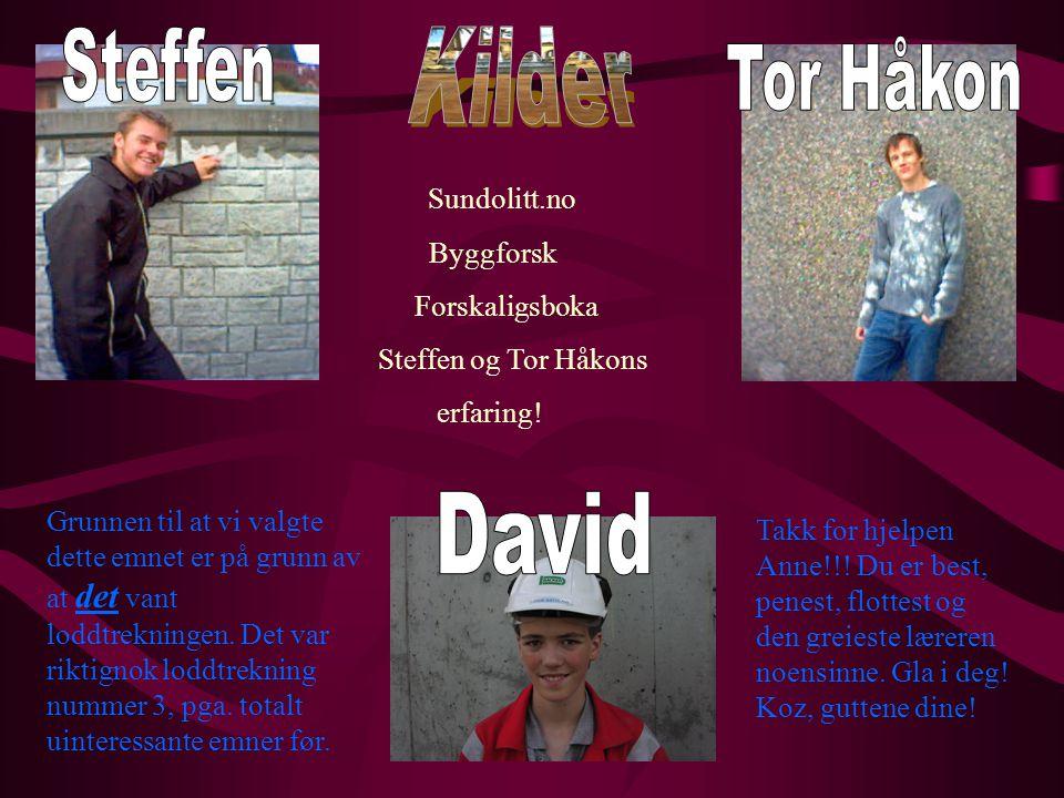 Steffen Kilder Tor Håkon David Sundolitt.no Byggforsk Forskaligsboka