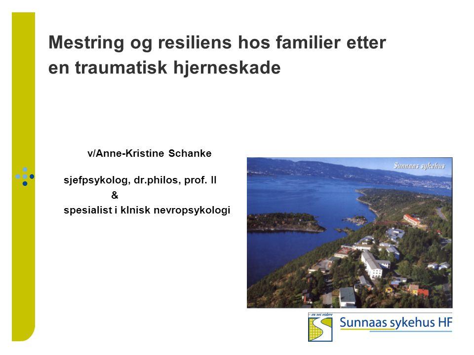 Mestring og resiliens hos familier etter en traumatisk hjerneskade