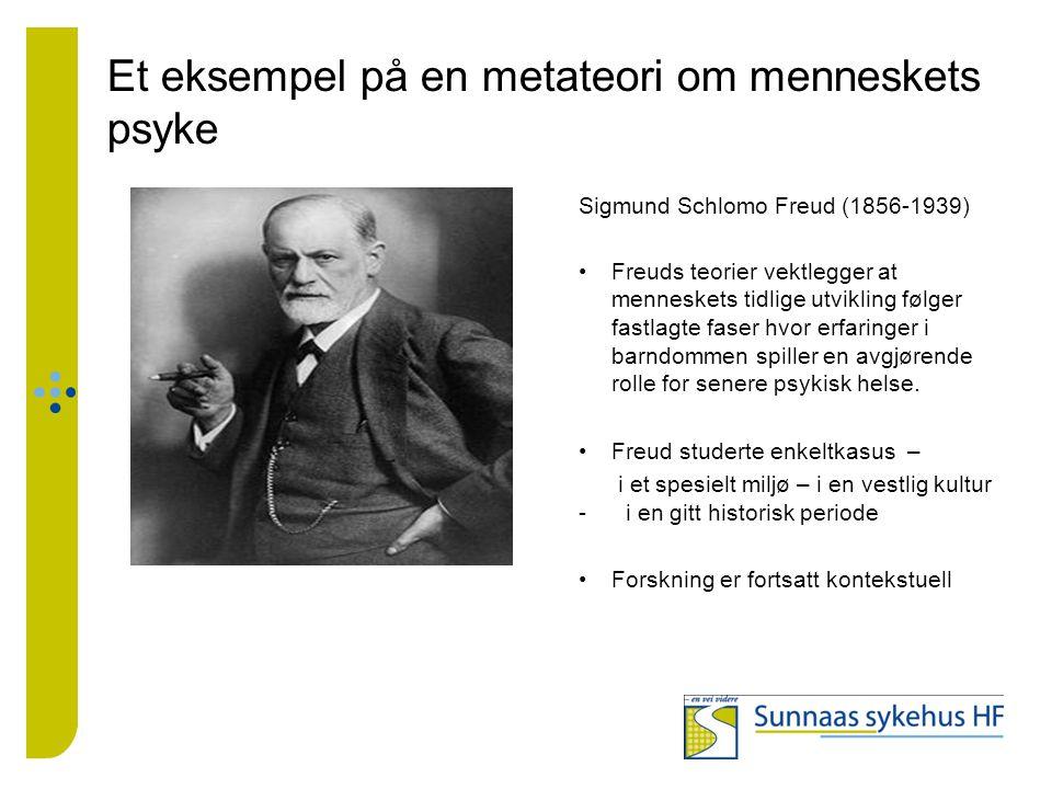 Et eksempel på en metateori om menneskets psyke