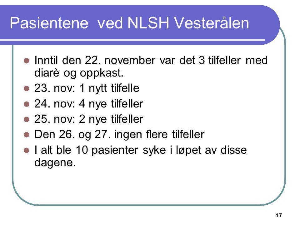 Pasientene ved NLSH Vesterålen