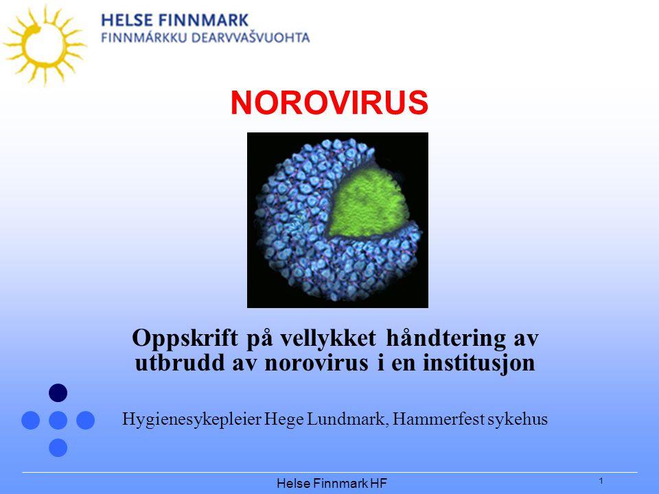 Hygienesykepleier Hege Lundmark, Hammerfest sykehus