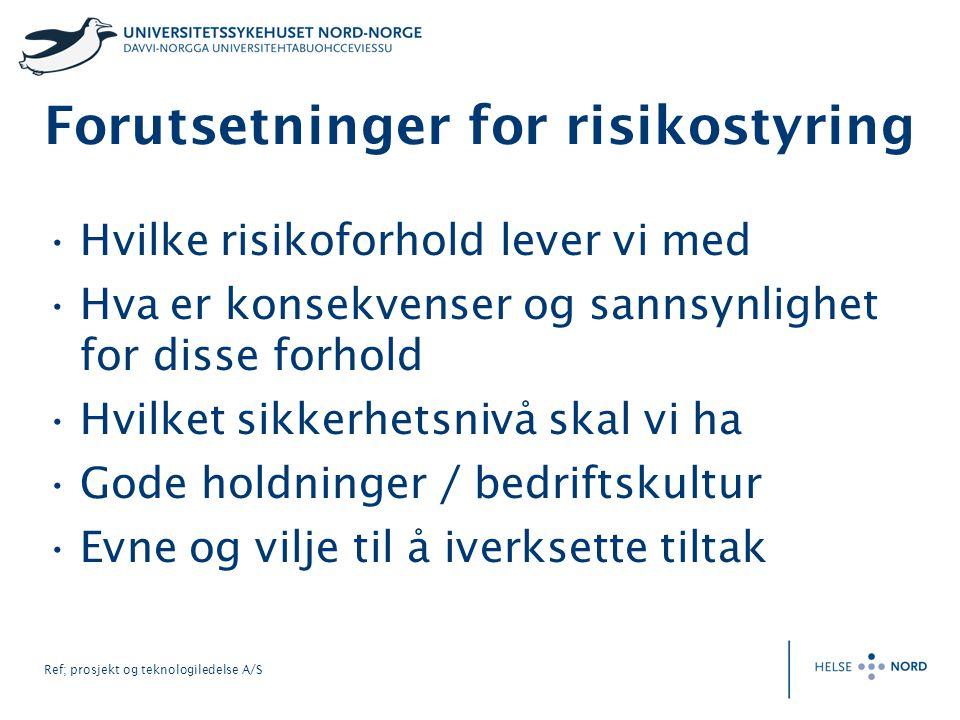Forutsetninger for risikostyring