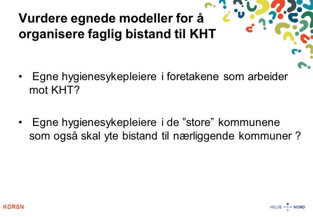 Vurdere egnede modeller for å organisere faglig bistand til KHT