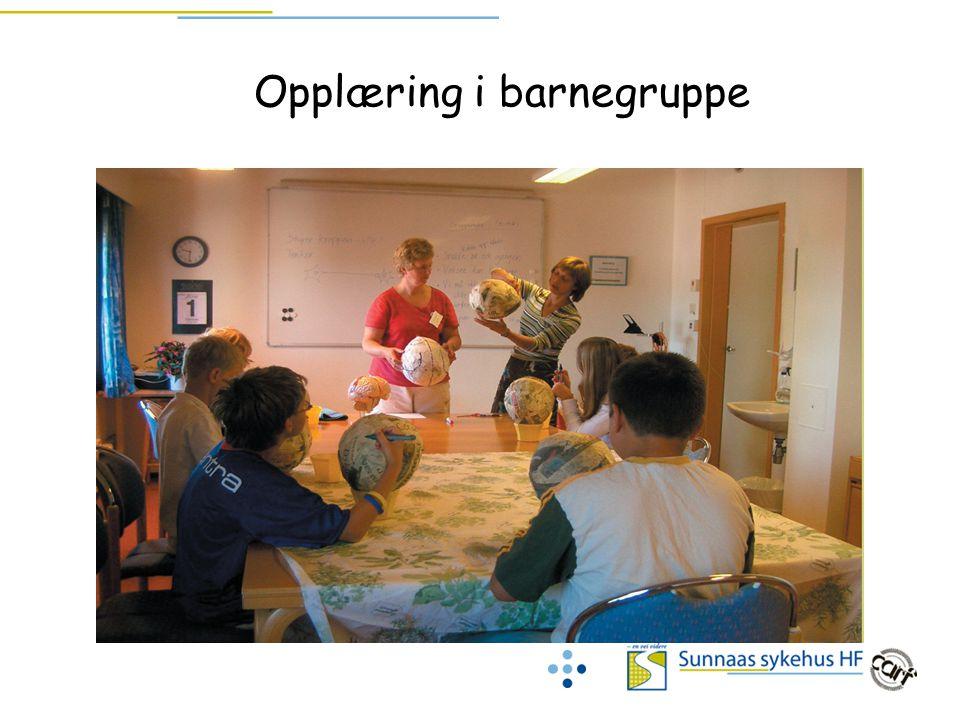 Opplæring i barnegruppe