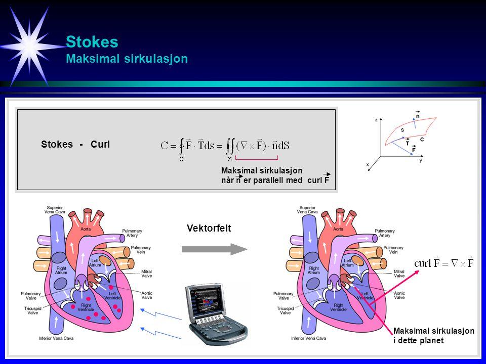 Stokes Maksimal sirkulasjon