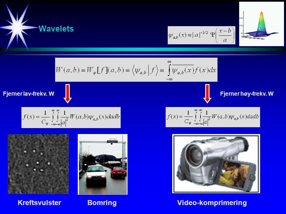 Wavelets Kreftsvulster Bomring Video-komprimering Fjerner lav-frekv. W