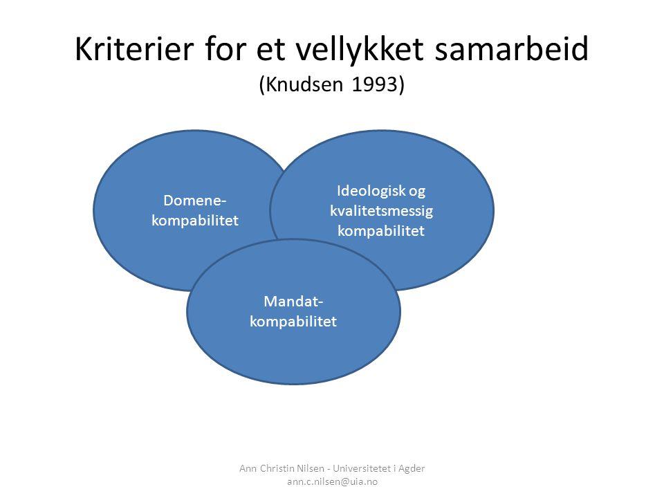 Kriterier for et vellykket samarbeid (Knudsen 1993)