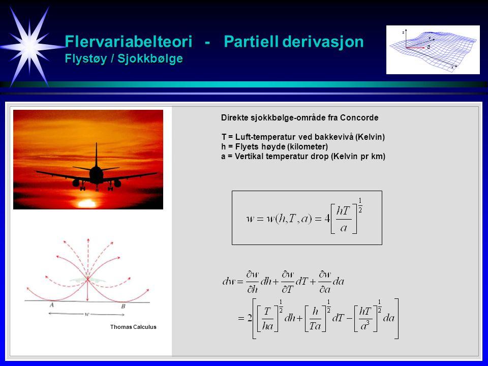 Flervariabelteori - Partiell derivasjon Flystøy / Sjokkbølge