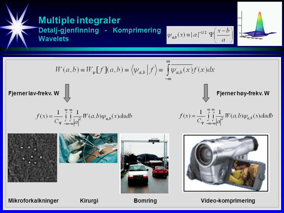 Multiple integraler Detalj-gjenfinning - Komprimering Wavelets