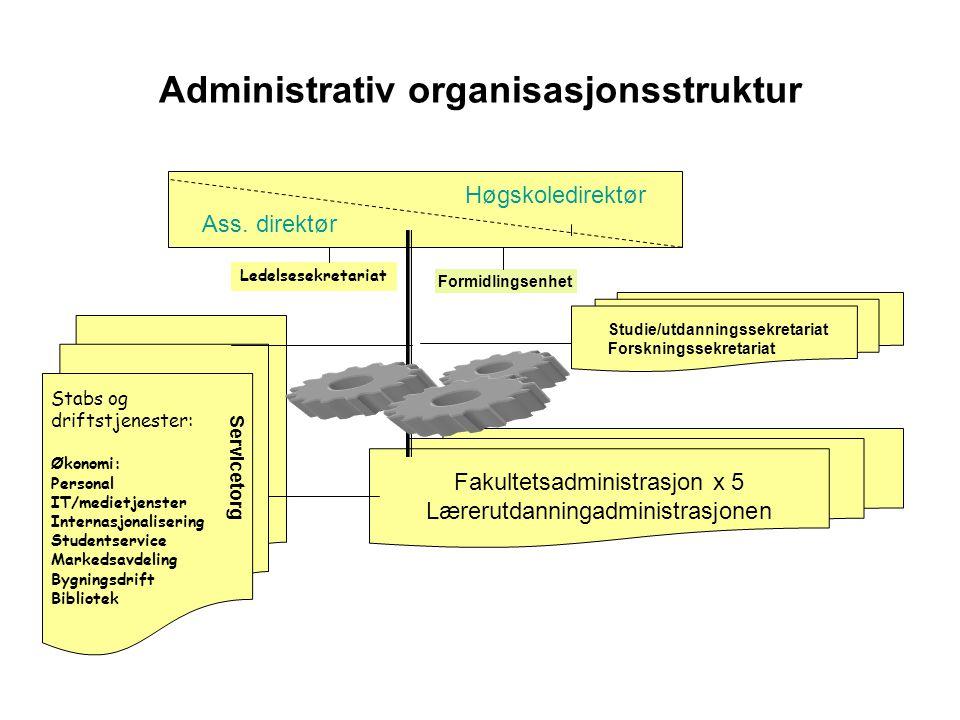 Administrativ organisasjonsstruktur