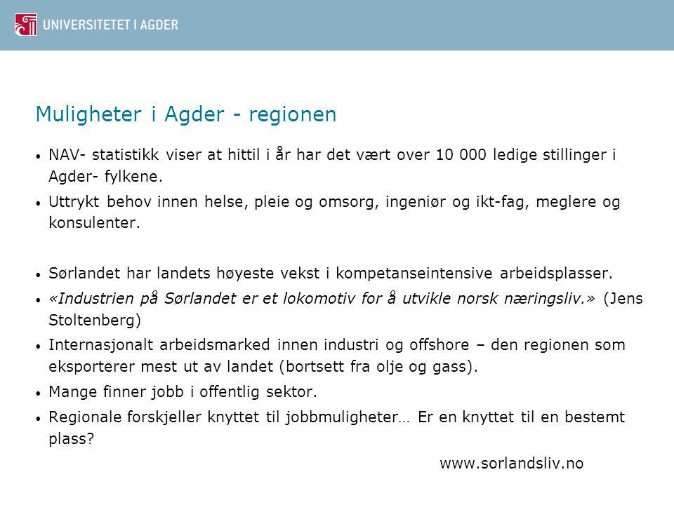 Muligheter i Agder - regionen