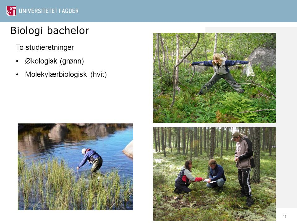 Biologi bachelor To studieretninger Økologisk (grønn)