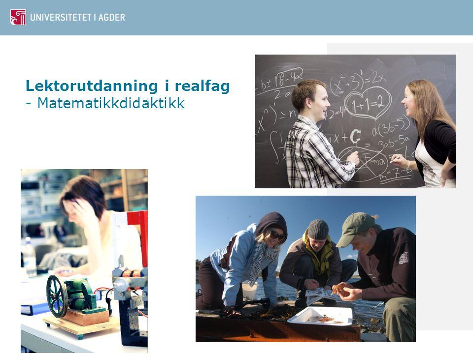 Lektorutdanning i realfag - Matematikkdidaktikk