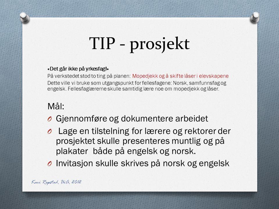 TIP - prosjekt Mål: Gjennomføre og dokumentere arbeidet